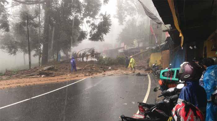 Hujan Deras di Puncak Bogor Sebabkan Longsor