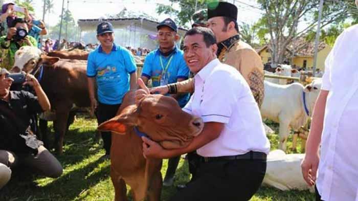 Mentan Yakin Lampung Berkontribusi Nasional di Swasembada Daging Sapi 2023