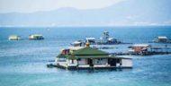 Pantai Sari Ringgung Lampung, Destinasi Pasir Timbul Dan Masjid Apung