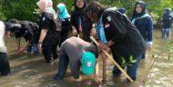 Tanam Bakau di Hari Bumi, Ini Komitmen Maharipal UIN Lampung