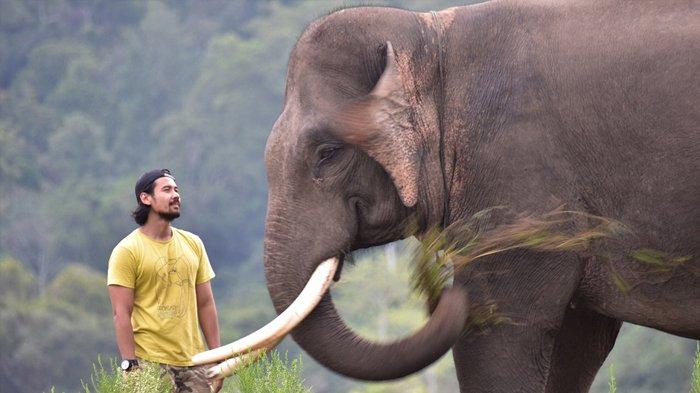 Kunjungi Way Kambas Lampung, Aktor Ini Diberi Penghargaan Peduli Gajah