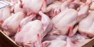 BPS Imbau Pemerintah Waspada Naiknya Harga Daging dan Telur Jelang Lebaran