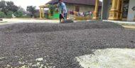 Hujan Pengaruhi Kualitas Biji Kopi Lampung Barat