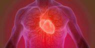 Gejala dan Cara Mengobati Jantung Bengkak Sebelum Parah