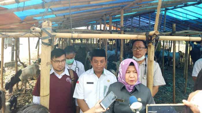 Kepala Dinas Pertanian kota Bandar Lampung