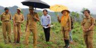 Lampung Barat segera Realisasikan Sekolah Kopi