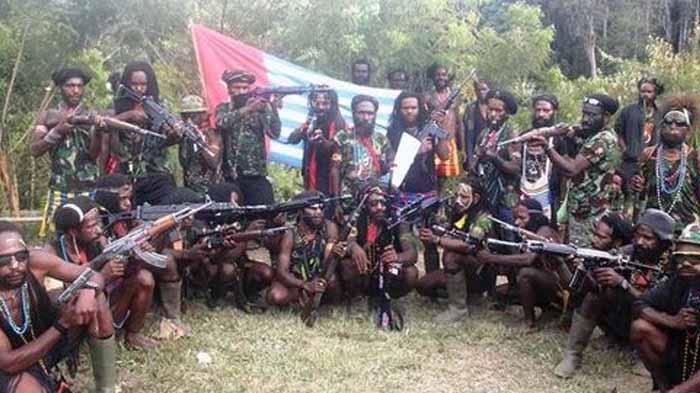 31 Pekerja Pembangunan Jalan Nduga Papua Dibunuh KKB, Ini Dugaannya