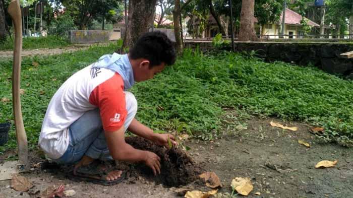 [Kolom] Hari Sejuta Pohon, Refleksi Cinta Akan Kehidupan