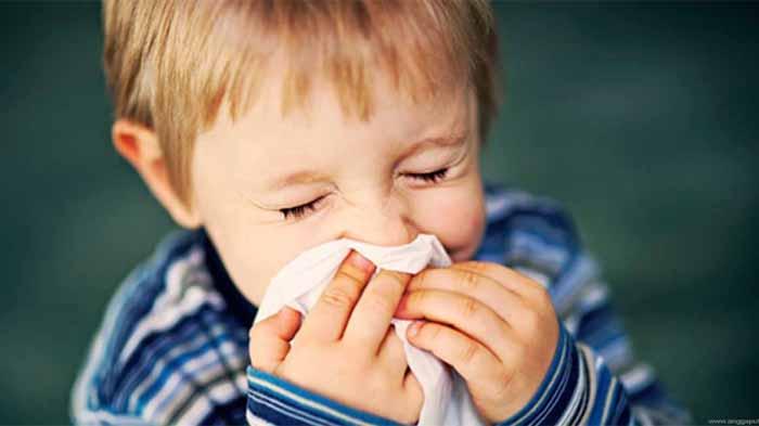 Cara Mengobati Flu Pada Anak