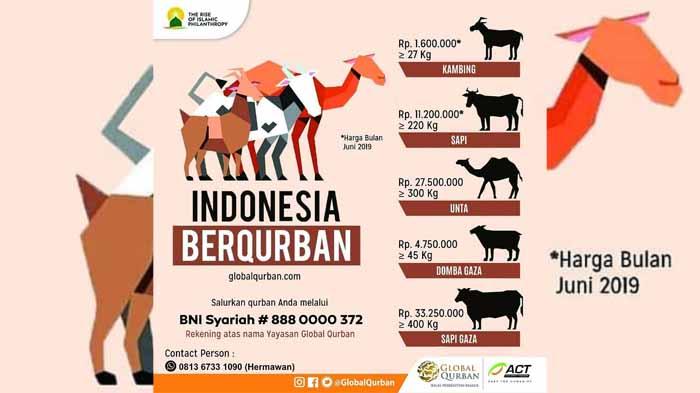 Ini Harga Qurban Spesial dari Global Qurban-ACT Lampung