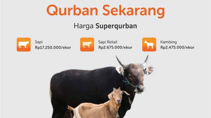 Superqurban Rumah Zakat Lampung