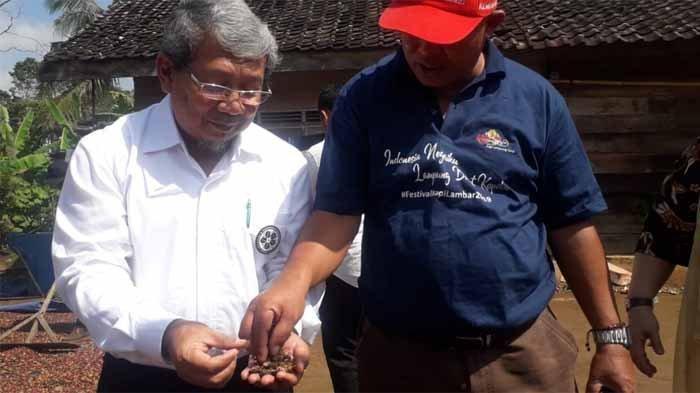 Kopi Lampung Barat