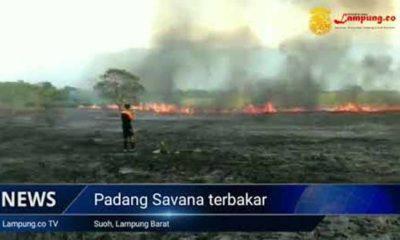 Kebakaran di Suoh